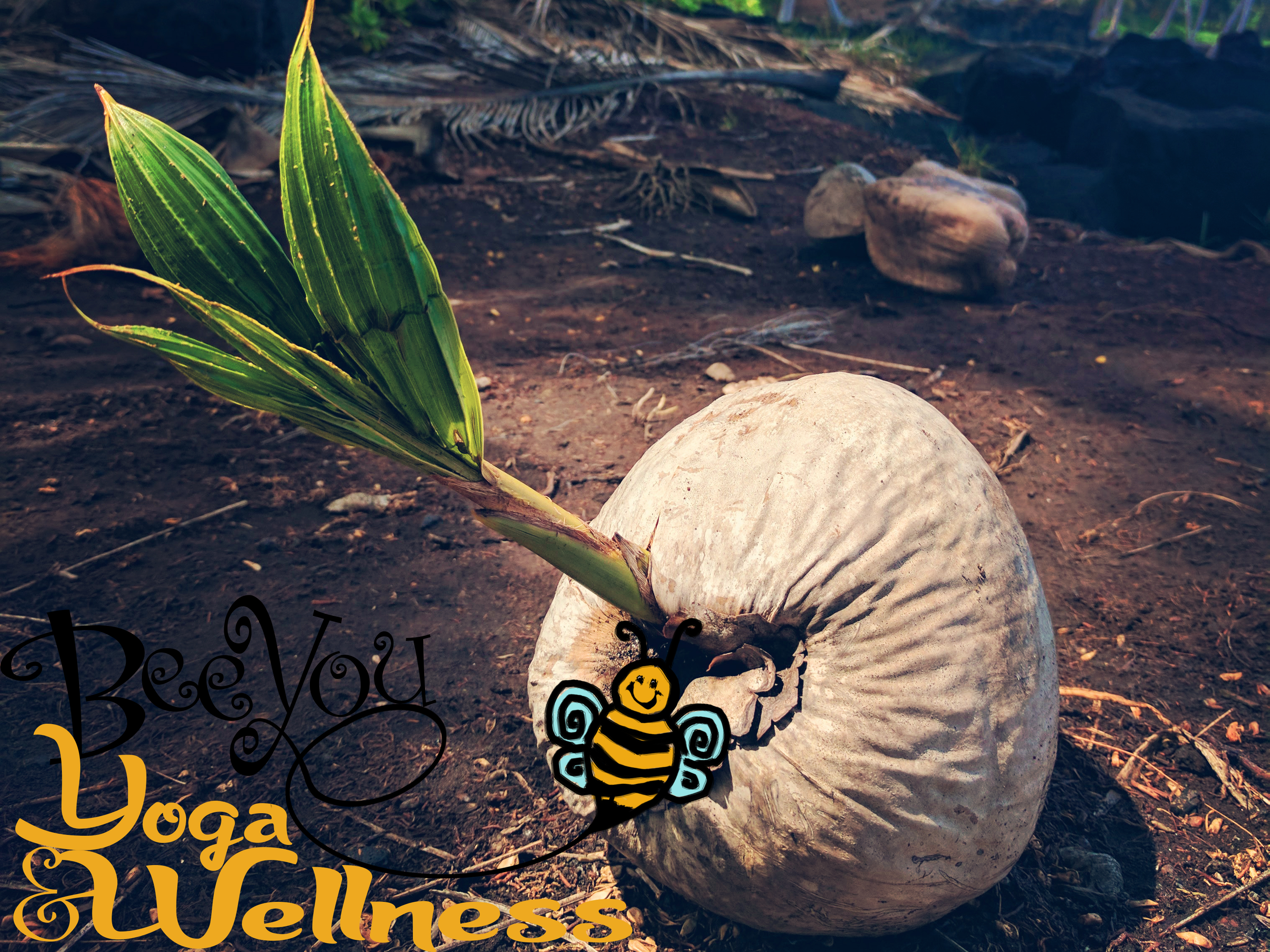 Bee You Yoga and Wellness - Yoga Therapy, Yoga, Yoga for anxiety, Yoga for depression, Yoga for recovery, y12sr, donation based yoga & meditation for everyone, kids yoga, BARRE, Sadie Nardini Yoga Shred Fusion, Full body conditioning, Yoga Nidra, Swedish massage, myofascial release, PSYCH-K, Reiki