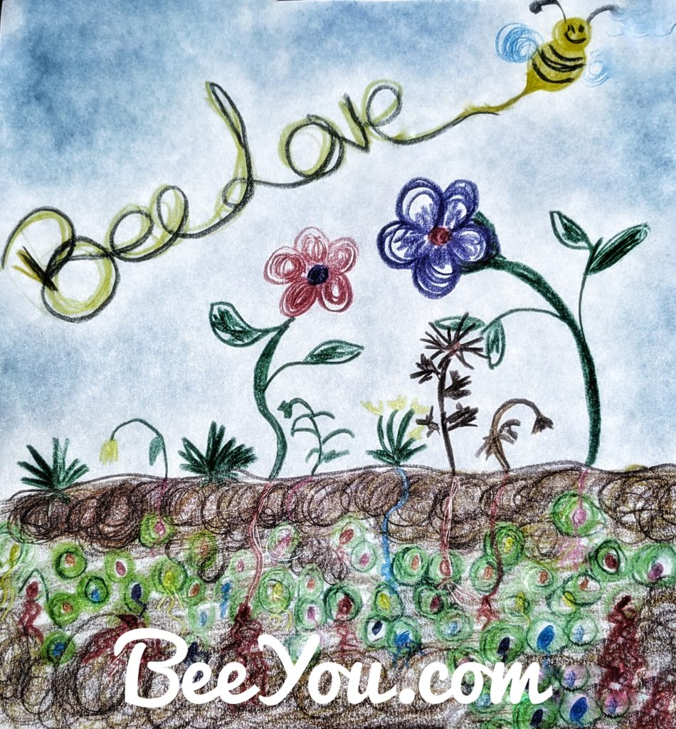 Wrap your seeds in love